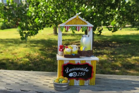 a lemonade sales stall